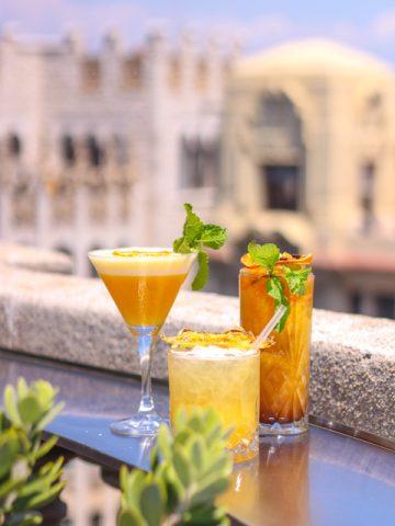 Rooftop-drinks